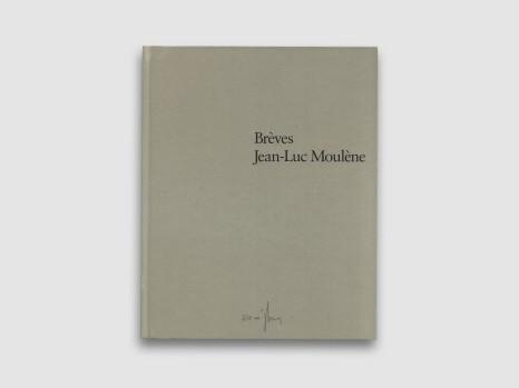 Jean-Luc Moulène - Brèves