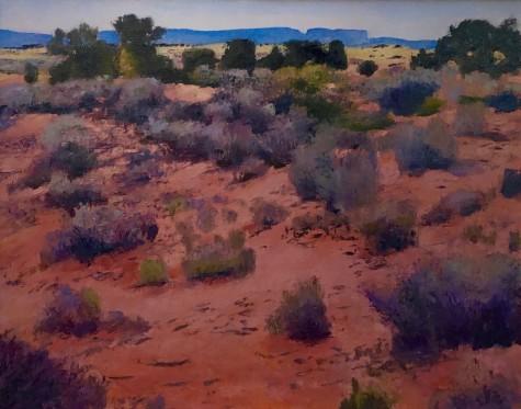 Coral Sand Desert