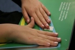 Exciting new tactile books that everyone can enjoy