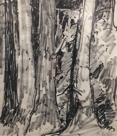 René Richard, C.M., R.C.A., Gros arbres, 1967 Felt pen on paper - Crayon feutre sur papier 13 x 10 1/2 in 33 x 26.7 cm