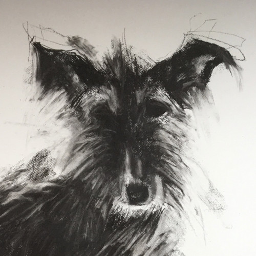 Sally Muir - Rupert (London Gallery)
