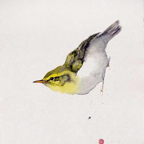 Karl Martens - Wood Warbler (Hungerford Gallery)