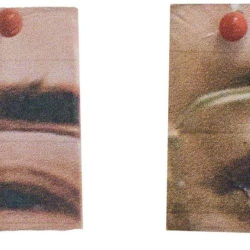 Herman Rahman  Clarity More Solid Than Granite (2 Images), 2018  c-type print on hahnemuehle photo rag  29 × 20.5 cm  Edition of 10 plus 5 artist's proofs  Series: HAN