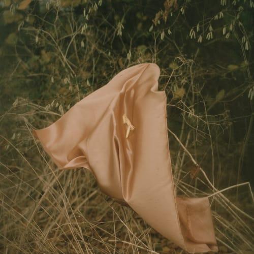 Elizabeth Gabrielle Lee  Serai (Lemongrass), 2018  archival print on awagami bunkoshi washi paper, mounted on aluminium  30 × 23.5 cm  Edition of 5 plus 2 artist's proofs  Series: Vessels