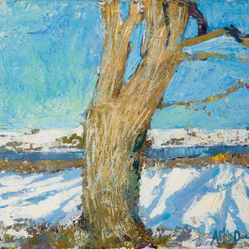 Allan MacDonald  oak shadow Lentran  oil on canvas  25cm x 30cm