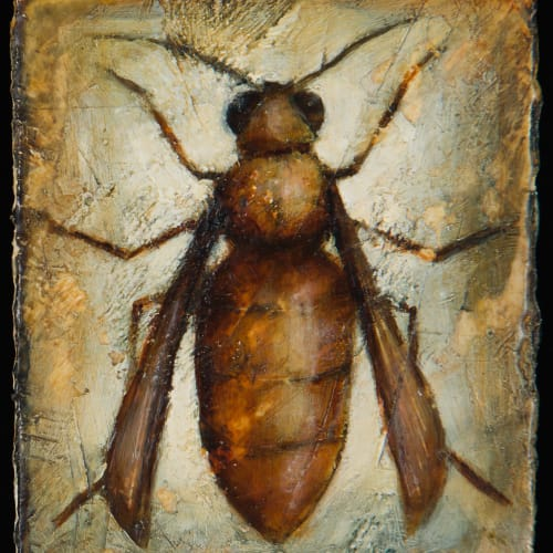 Peter White  Insect iii, 2020  acrylic and wax  10cm x 9cm