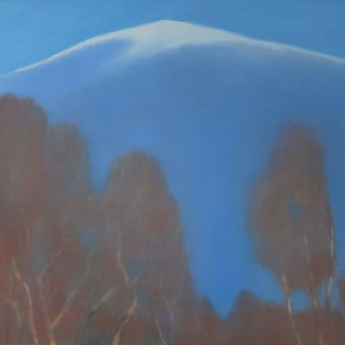 Jane MacNeill  Birches and Snow Mountain  oil on board  30cm x 34cm