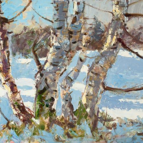 Allan MacDonald  Birches Belladrum, 2020  oil on canvas  61 x 76 cm  24 1/8 x 29 7/8 in