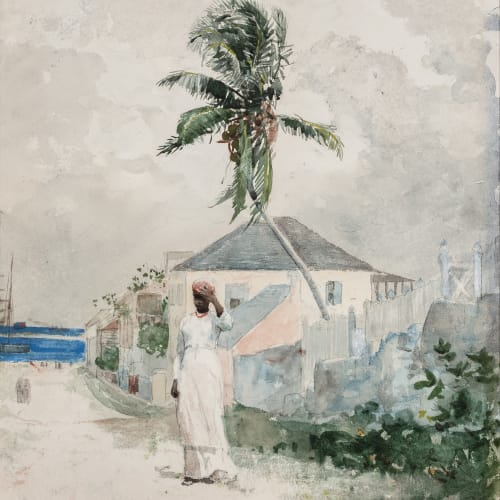 Winslow Homer, Along the Road, the Bahamas (Near the Queen's Staircase), 1885