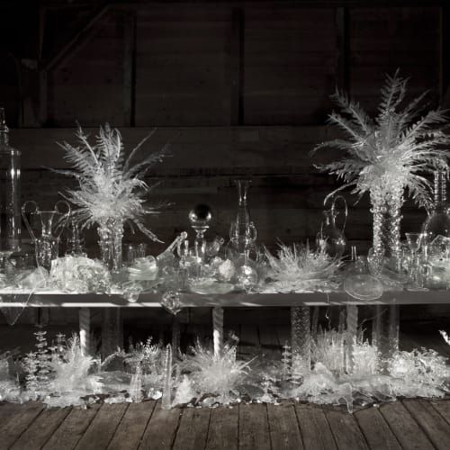 Beth Lipman, Laid Time Table with Cycads
