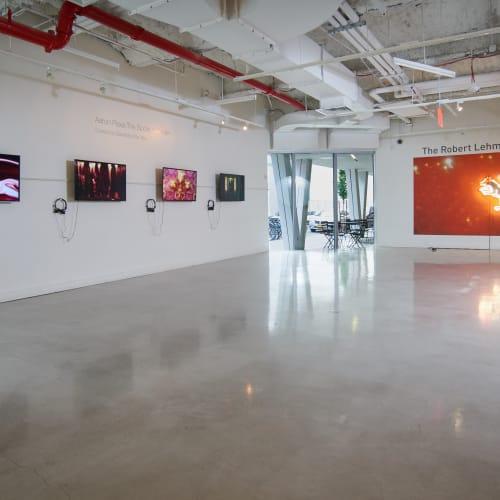 Aaron Pexa Installation View, Urban Glass, Brooklyn, NY