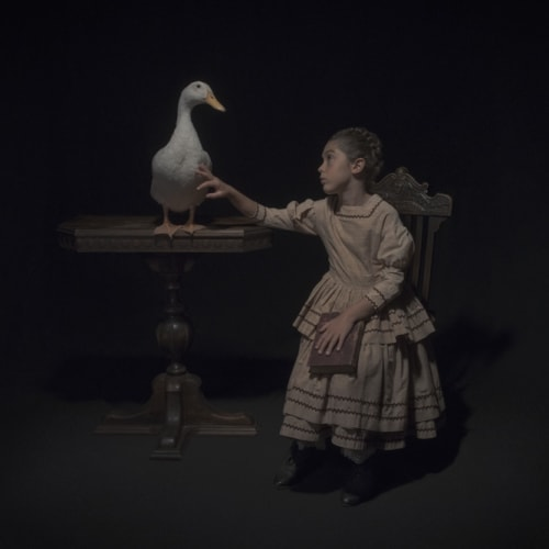 Tami Bahat, The Waterfowl, 2017, Framed Archival Pigment Print