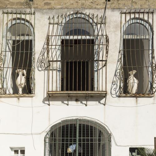 Sissi's Vasi Madre, courtyard Villa Sofia, via Guglielmo Marconi 1, Procida