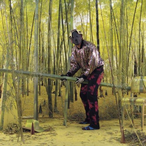"""Brian Bress, """"Being Bamboo,"""" (2006) (still)."""