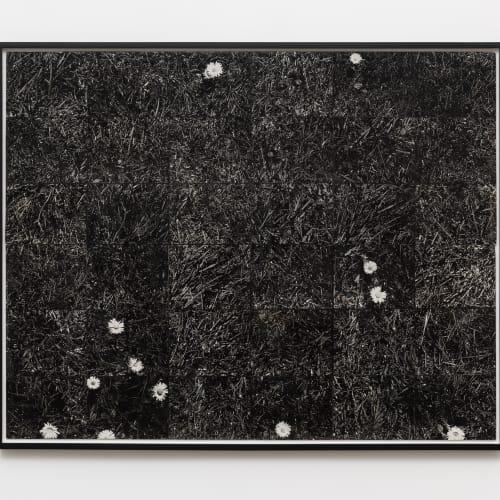 """Lew Thomas, """"GRASS,"""" (1973)."""