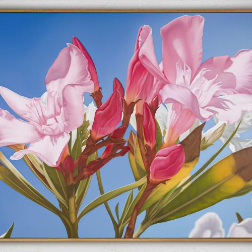 Mustafa Hulusi Oleander 3 2019 oil on canvas 152.4 x 203.2 cm
