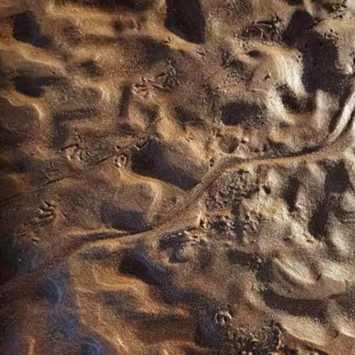 Trent Jansen & Johnny Nargoodah Drying river beds of Fitzroy River Image credit: Belinda Cook