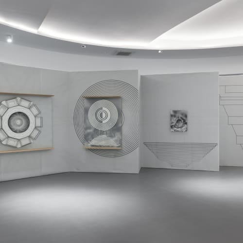 ceiba speciosa garden project _2007/2018 photographic paper b/w ilford printed with durst lambda 130, direct print on polyester, forex, silk-screen printing on glass ar luxar 3mm, plaster, okumè multilayer. dimensions: m 3 x 11 _installation view Termoli Prize 2021 _© ph Gianluca Di Ioia