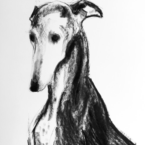 Sally Muir - Grace (London Gallery)