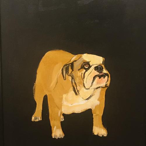 Robert James Clarke - Bulldog (London Gallery)