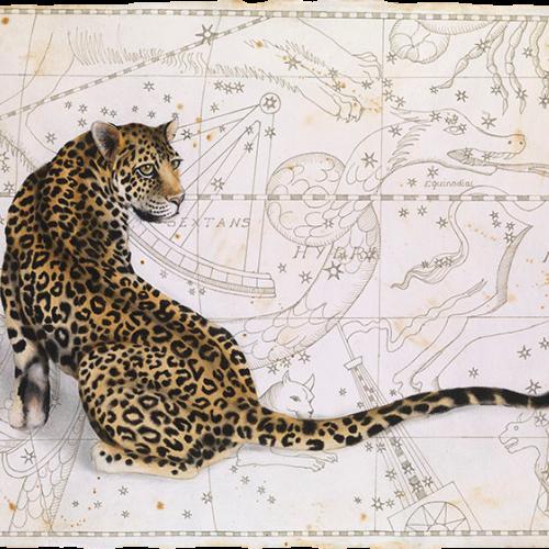 Nikki Stevens - Astro-Cat