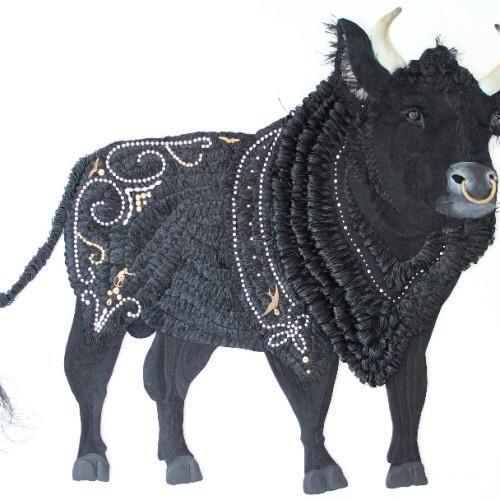 Karen Nicol - Stud Bull
