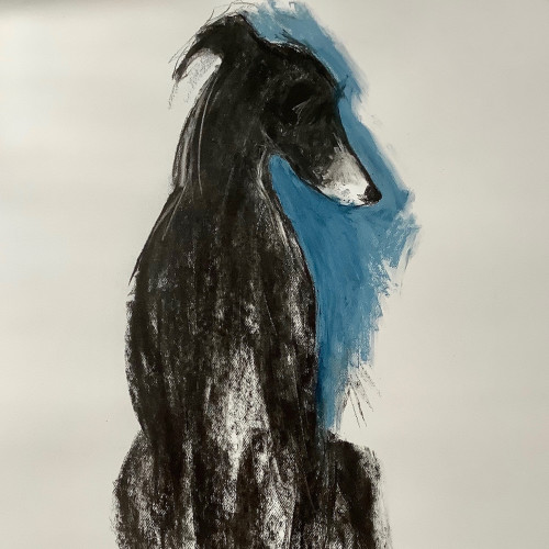 Sally Muir - George (Hungerford Gallery)
