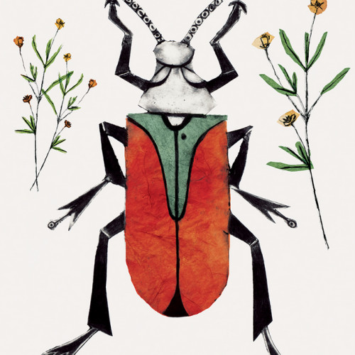 Beatrice Forshall - Scarlet Malachite Beetle