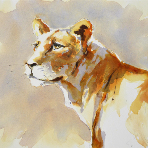 Julia Cassels - Lioness (Hungerford Gallery)