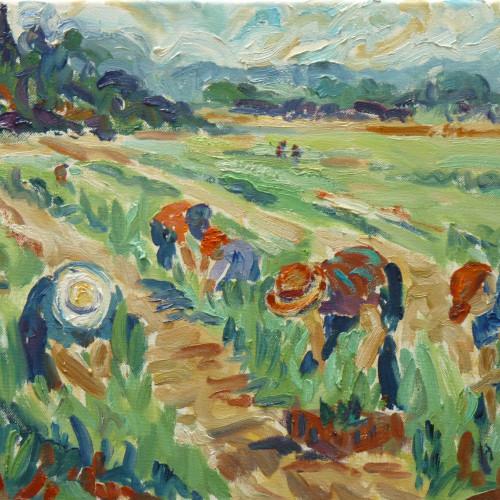 Fi Katzler - Harvest time at Callas (London Gallery)