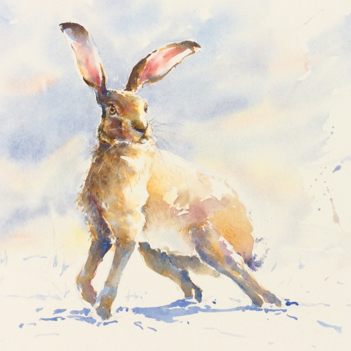 Julia Cassels - Winter Hare