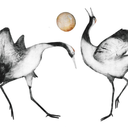 Beatrice Forshall - Japanese Cranes (Mounted)
