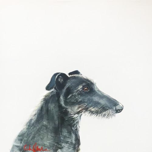 Robert Clarke - Deerhound