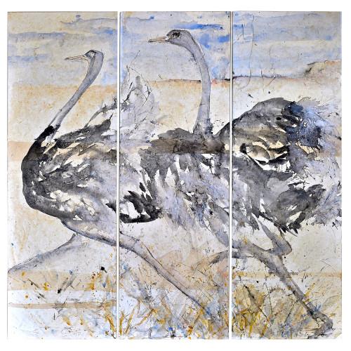 Christine Seifert - Ostrich Triptych (Hungerford Gallery)