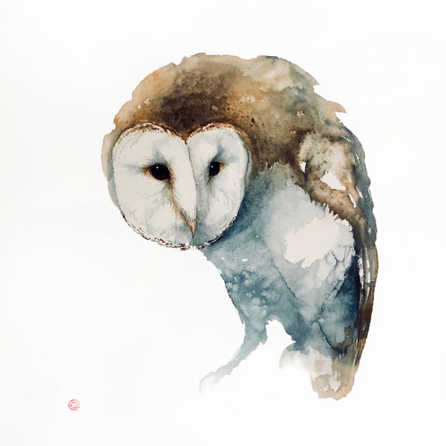 Karl Martens - Barn Owl (Hungerford Gallery)