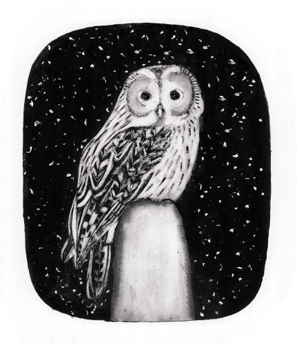 Beatrice Forshall, Tawny Owl (Unframed)