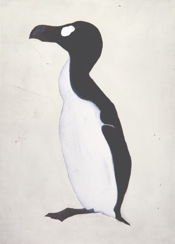 Kate Boxer, Great Auk (Mounted)