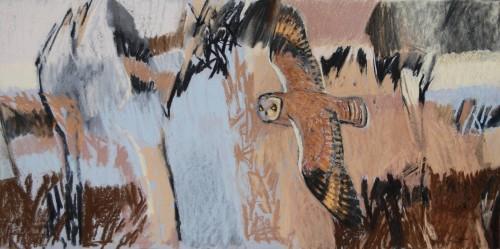 Dafila Scott, Short-Eared Owl over the Fen (Dew Pond Restaurant)