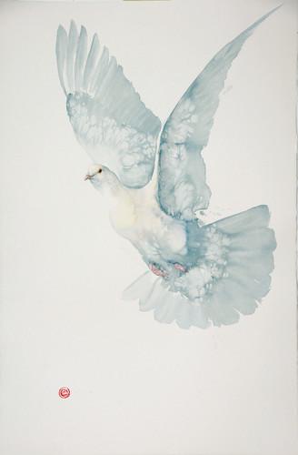 Karl Martens, Dove (Unframed) (Hungerford Gallery)