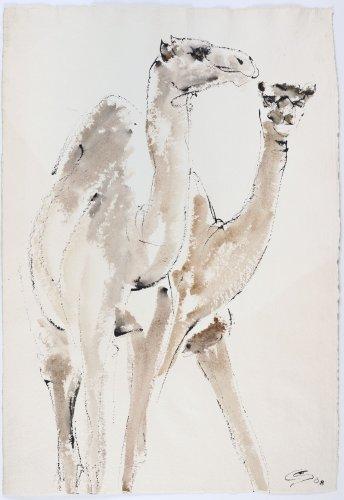 Christine Seifert, Two Camels (Unframed)