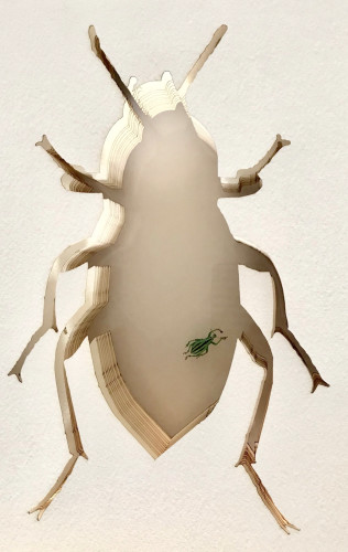 Patricia Mitchell, Bug (Hungerford Gallery)