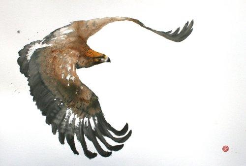 Karl Martens, Golden Eagle