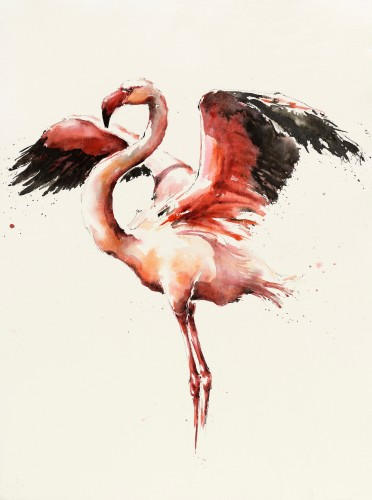 Julia Cassels, Flamingo Display