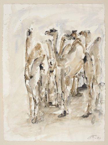 Christine Seifert, Group of Camels (Unframed)