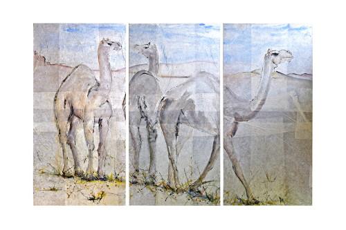 Christine Seifert, Camel Triptych (Hungerford Gallery)