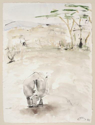 Christine Seifert, Rhino Away (Unframed) (Hungerford Gallery)