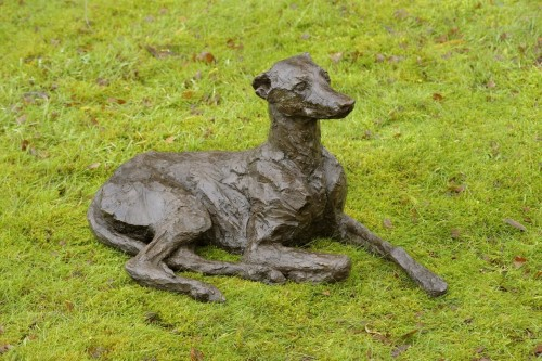 Rosemary Cook, Willow - Whippet