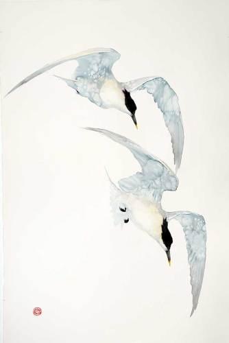 Karl Martens, Sandwich Terns (Unframed) (London Gallery)