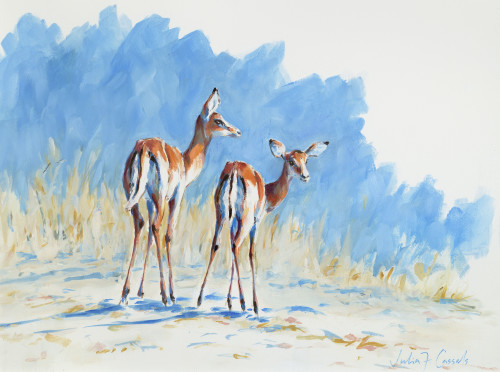 Julia Cassels, Impala Morning