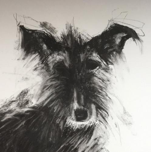 Sally Muir, Rupert (London Gallery)
